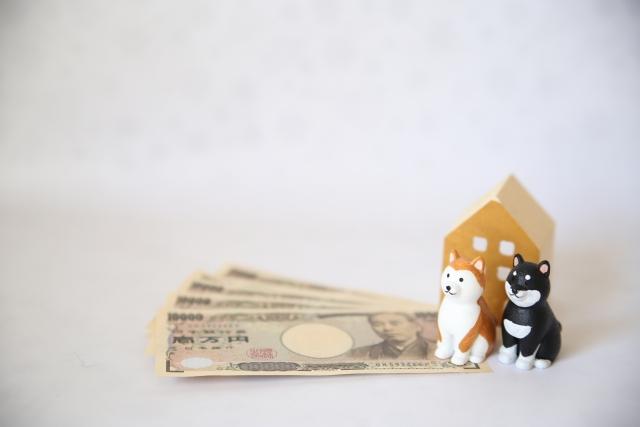 犬とお金 フリー